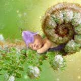 dream-2678332_960_720